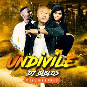 Biblos – Undivile (feat. Pro-Tee & Anelisa Ndlanga)