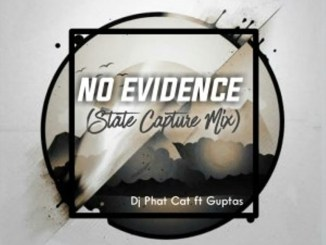 Dj Phat Cat, Guptas – No evidence (State Capture Mix)