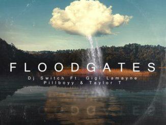 DJ Switch – Floodgates