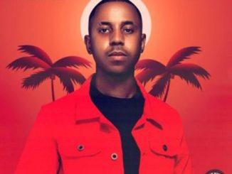 Felo Le Tee Ft. DJ Maphorisa – Phori