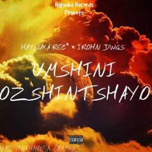 IRohn Dwgs ft. HaySuka Rec – Umshini Ozshintshayo