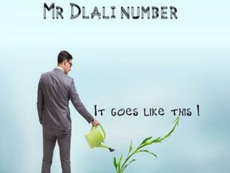 Mr Dlali Number – It Goes Like This