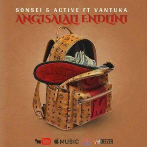 Sonsei ft. Vantuka & DJ Active – Angisalali Endlini