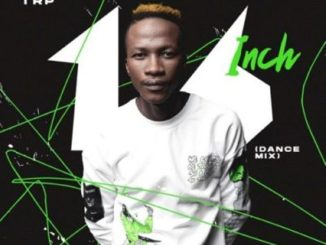 MDU aka TRP & DJ Maphorisa – Egoli Ft. Daliwonga & Aymos,MDU aka TRP – 16 Inch (Dance Mix)