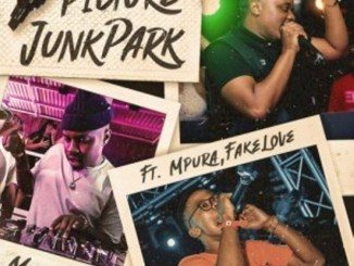 MR Jazziq – Picture Junk Park Ft Mpura, Fakelove