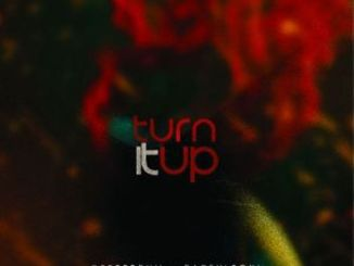 Deeper Phil, Earful Soul & NutownSoul – Turn It Up (Original Mix)