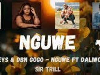 Musa Keys & DBN Gogo – Nguwe ft. Sir Trill & Daliwonga