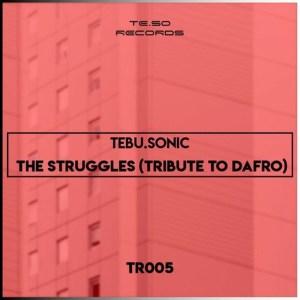 Tebu Sonic – The Struggles (Tribute To Dafro)