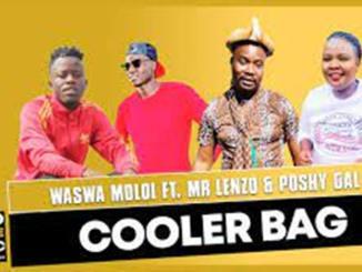 Waswa Moloi – Cooler Bag ft Mr Lenzo & Poshy Gal