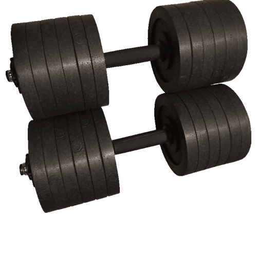 dumbbell prop weights