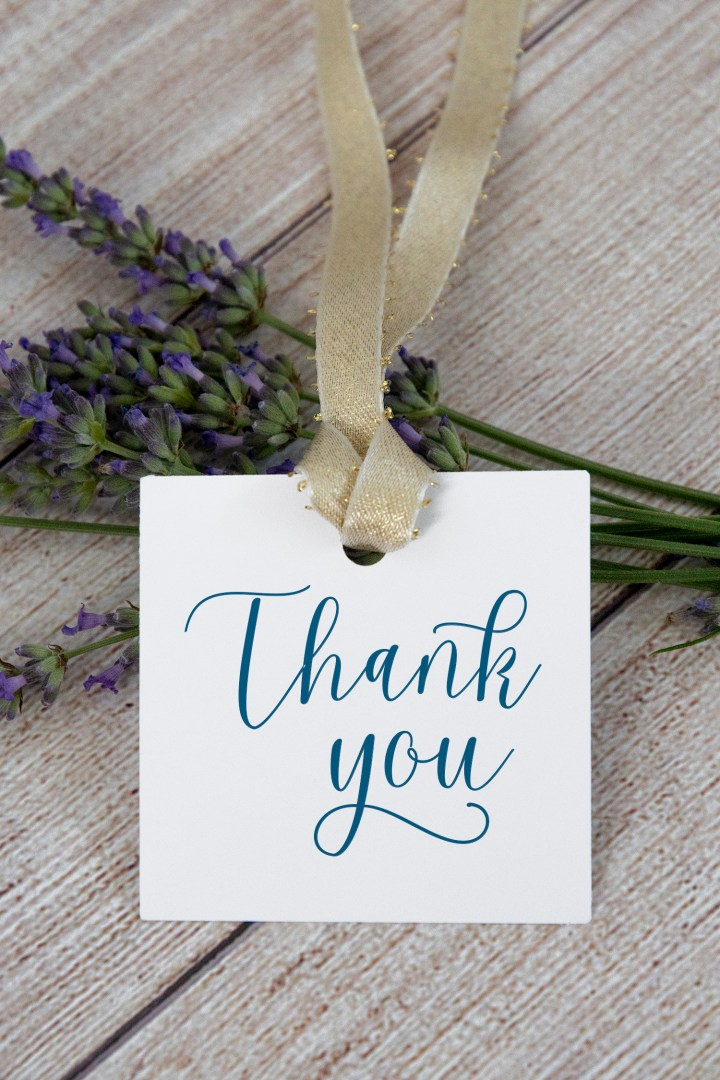 Blue Calligraphy Thank You Gift Tags