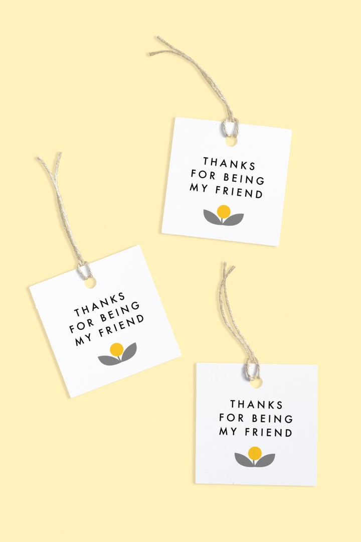 Thanks for Being My Friend Gift Tags