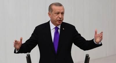 Эрдоган анонсировал новый саммит по Сирии