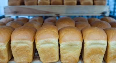 Подорожание хлеба возмутило жителей Украины