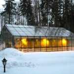 Теплица зимой — учтите ее особенности