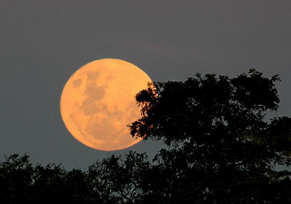 african-moonrise_lznp-4401
