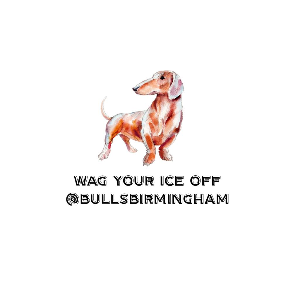 Wag Your Ice Off with the Bulls!