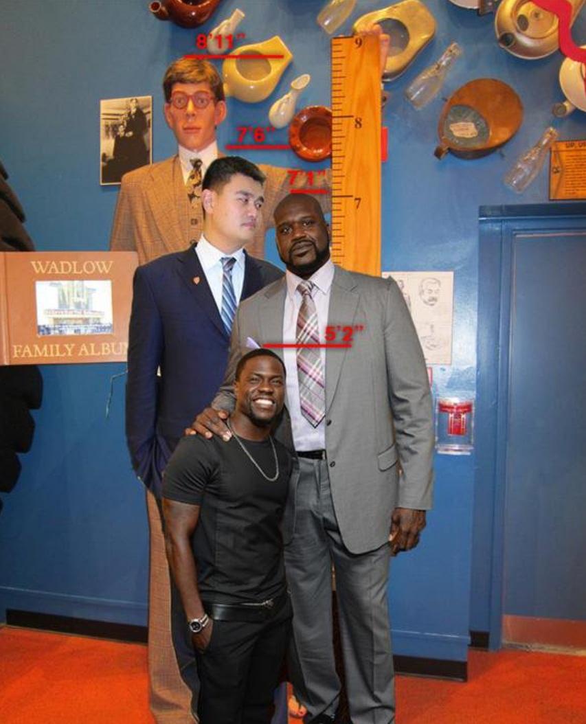 Robert Wadlow To Yao Ming Comparison Exploring Mars