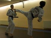 World Taekwondo Federation