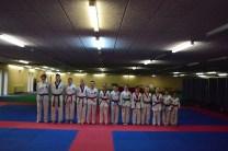 Taekwondo Ladder