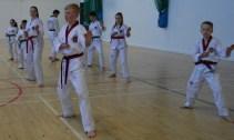 Falkirk Taekwondo