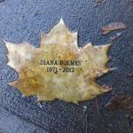Diana Holmes Leaf of Remembrance