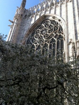 Duomo in springtime