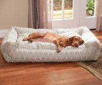 Reasons Why You Should Get a Bed for Your Dog | FallinPets