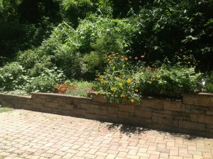 Longer view of garden wall