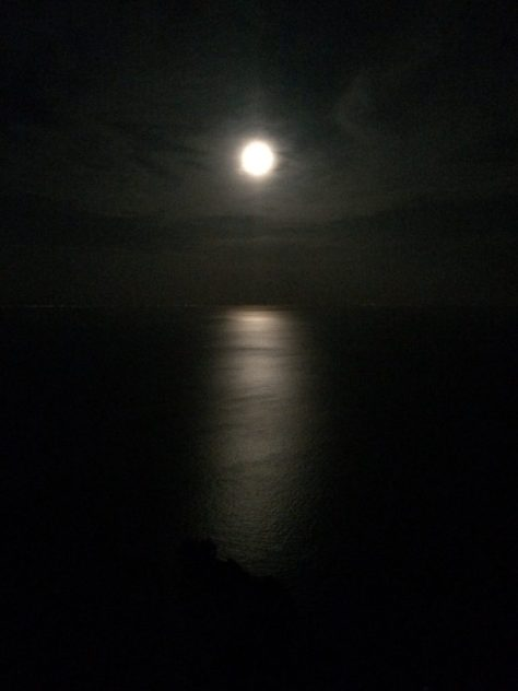 Night sky full of moon. Photo by Kat.