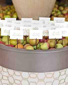 cassandra-heath-wedding-michigan-place-cards-apples-0426-d112511_vert
