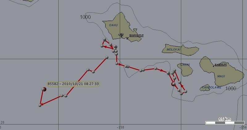 1010-17-map
