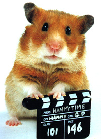Image Hammy Hamster
