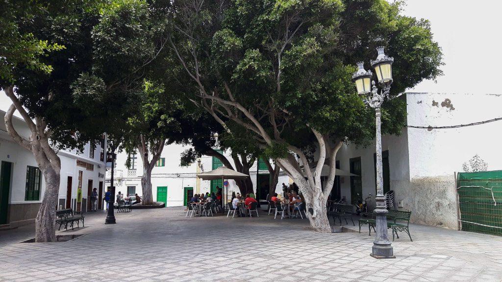 Lanzarote-travel-guide-haria-das-tal-der-tausend-palmen (1 von 1) (1)
