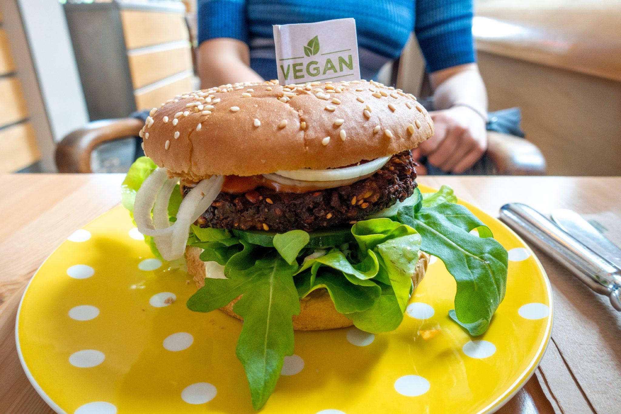 Landau-pfalz-café-ich-bin-so-frey-restaurant-burger
