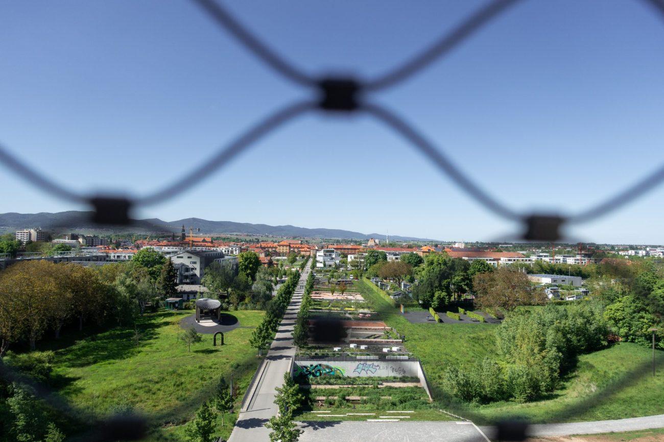 Landau-pfalz-sehenswürdigkeit-südpark-ausblick-gitter