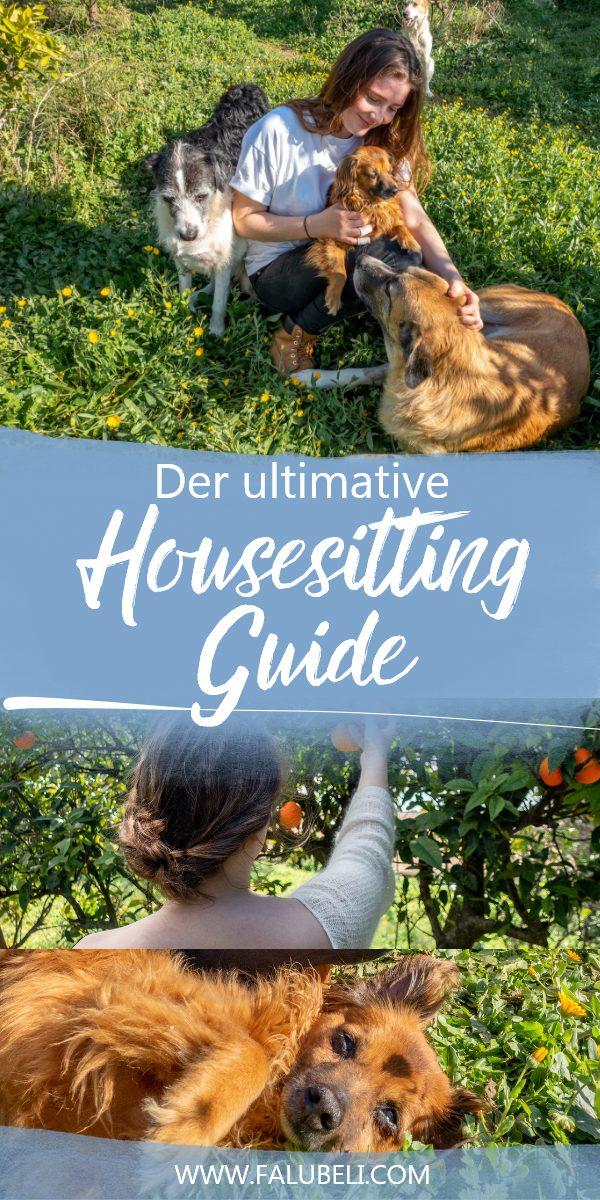 housesitting-guide-kostenlos-wohnen-grafik