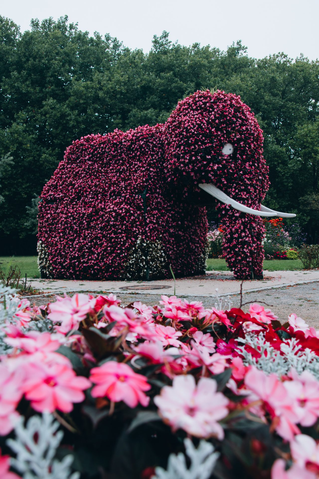 Sehenswürdigkeiten-Hamm-Elefanten