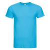 R155M    turquoise 1