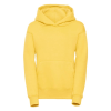 R575B    yellow 1