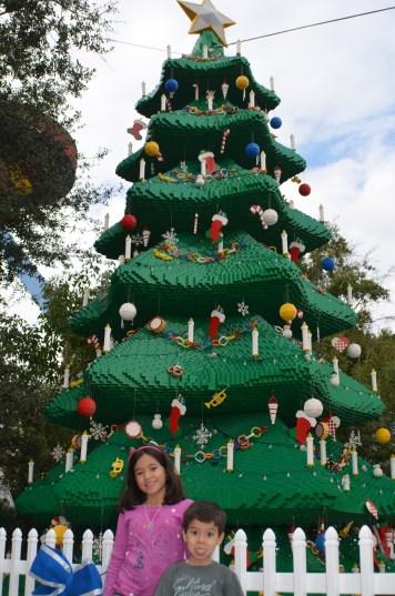 Enquanto ela escolhe a árvore de natal para a foto...