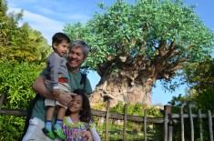 Árvore da Vida, Animal Kingdom
