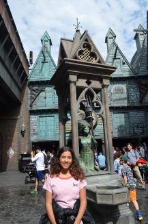 The Wizarding World of Harry Potter -Diagon Alley