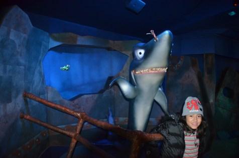 Com os tubarões