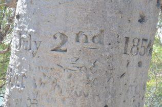 (C) Jule Reiselust: Daten der Reparaturzeit der Tom Tough bei Timber Creek.