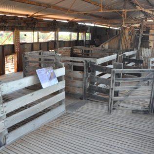(C) Jule Reiselust: Schafställe und Anlage zum Scheren auf der Peron Station.