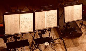 (C) Jule Reiselust: Blick in den Orchestergraben in der Semperoper Dresden.