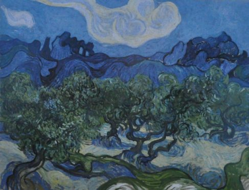 (C) Jule Reiselust: The Olive Trees (1898), gemalt von Vincent van Gogh