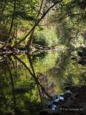 Big Sur River am Big Sur Campground