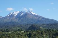 Nationalpark Vicente Perez Rosales